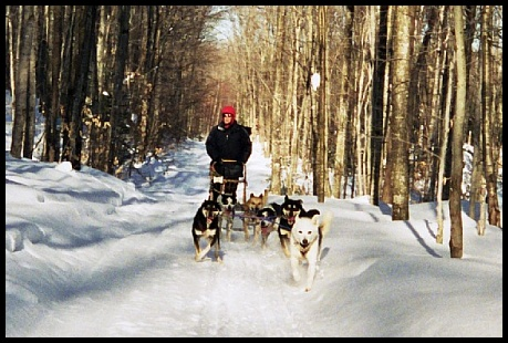 Tom and his sled dogs in Hiawatha National Forest - Michigan's Upper Peninsula